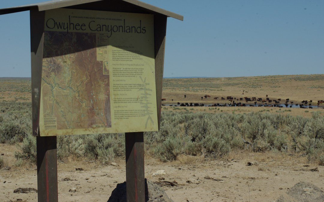 Owyhee Initiative Wise Use County Supremacy Collaboration