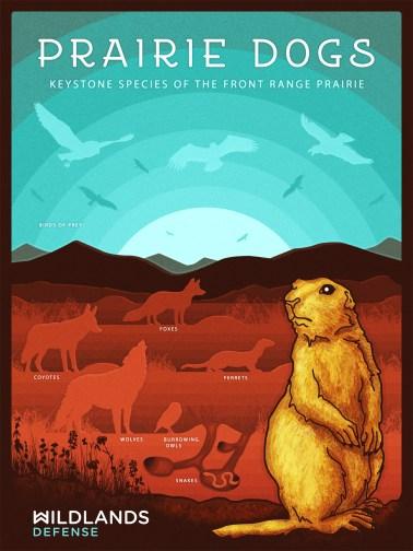 prairiedogs_poster02