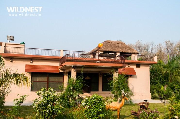 dudhwa-barasingha-lodge-3.jpg?resize=742