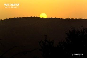 Sunset at Sariska Tiger Reserve