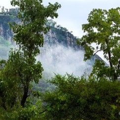 Sariska tiger reserve landscape in monsoons
