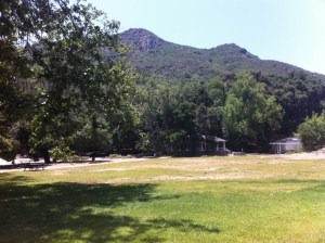 Peter Strauss Ranch