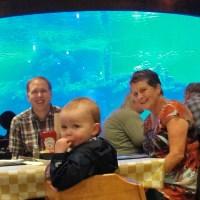 Phoenix, AZ Rainy Day Adventure: Wildlife World Zoo and Aquarium