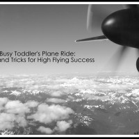 High Flying Success: One Busy Toddler's Plane Ride