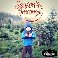 Seasons Greetings + Happy Cyber Monday!