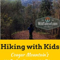 Hiking with Kids: Cougar Mountain's Wildside-De Leo Wall Loop