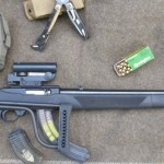 The Ruger 10/22 Rifle: A Survival Cameleon