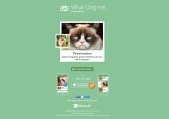 what-dog.net Fetch! Microsoft