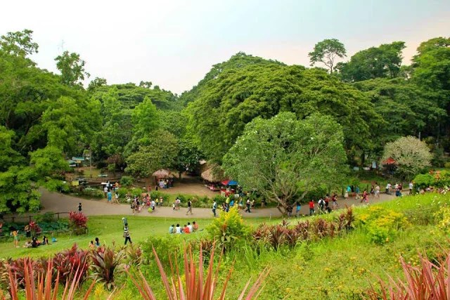 la mesa ecopark Book your tickets online for la mesa eco park, quezon city: see 255 reviews, articles, and 284 photos of la mesa eco park, ranked no5 on tripadvisor among 80 attractions in quezon city.