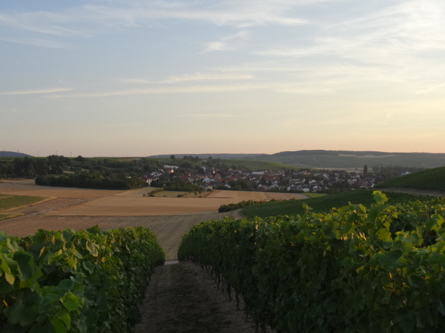 The village of Volxheim at sunset