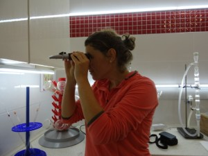 Me using a refractometer. Very exciting.