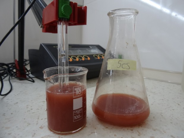 Testing the pH level.