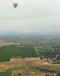 Hot air ballons rise above the Temecula wine Country