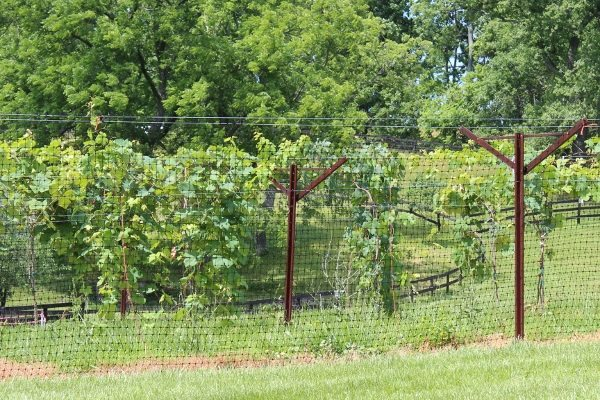 TridentCorp Deer Fence2 (600x400)
