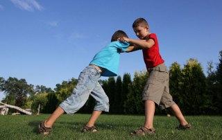 Harcművészet és agresszivitás