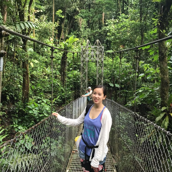 don't fall off the hanging bridges...!
