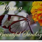 40 Lovely Sunday Wishes And Quotes For You 2016