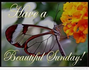 lovely sunday wishes and quotes