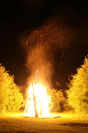 Fire-Sculpture-Burning-(2)
