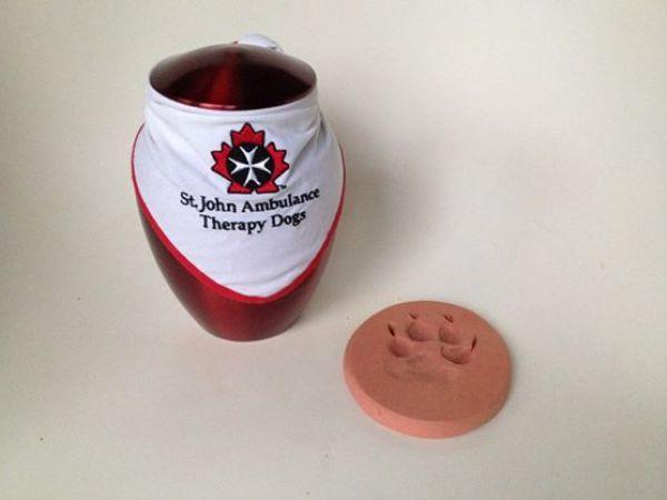 TherapyDogLuka