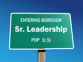 Entering Sr. Leadership Borough, Population 1.5