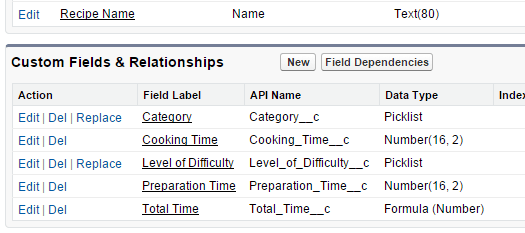 Showing custom and standard field setup in Salesforce
