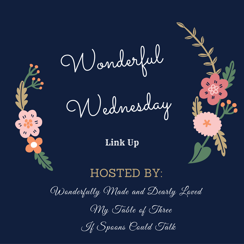 Wonderful Wednesday Link Up (Unofficial THM recipe link up)