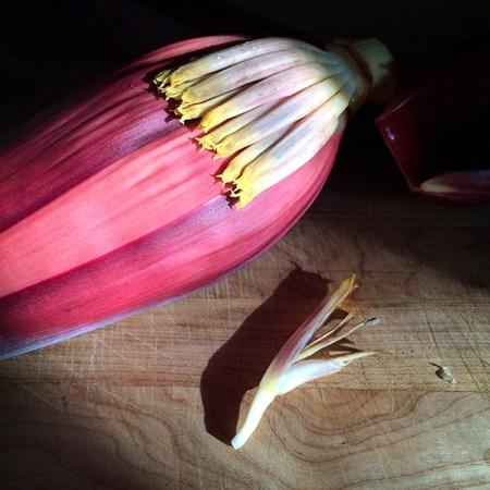 Banana Blossom: Interior
