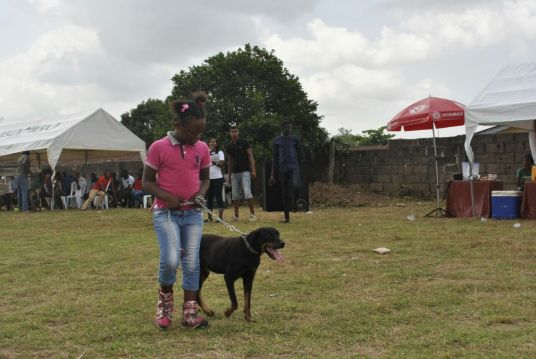 abeokuta-dog-fair-5