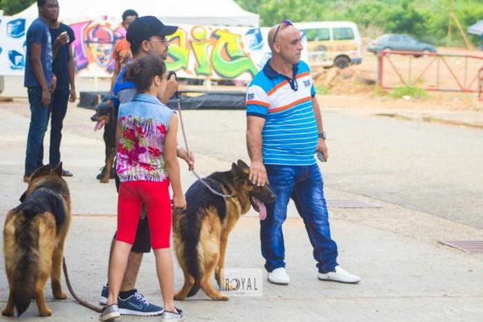 Pent Dog Show 2017 Ghana 3