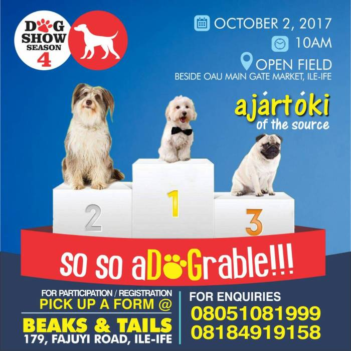 AJARTOKI OF THE SOURCE Dog Show 2017