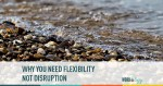 Why You Need Flexibility Not Disruption