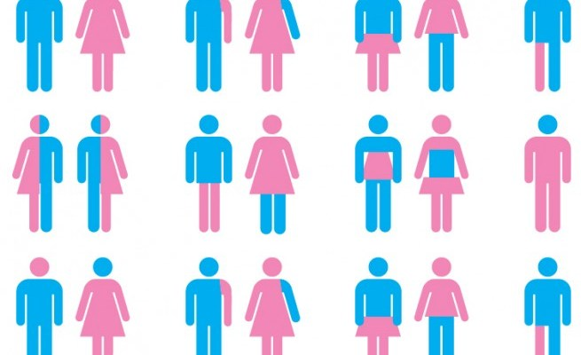 Heads Up: New Gender Identities Metastasize Into New Gender Pronouns