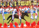 Horse riding tricks!