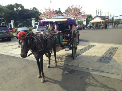 Tourist wagon
