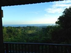 Puri Mangga Jungle House View Terrace