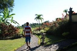 Puri Mangga Path