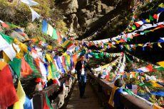 Bhutan Tigers Nest Flags Bill