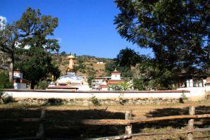 Punakha Stupa