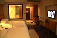 Sheraton Udaipur Room 2