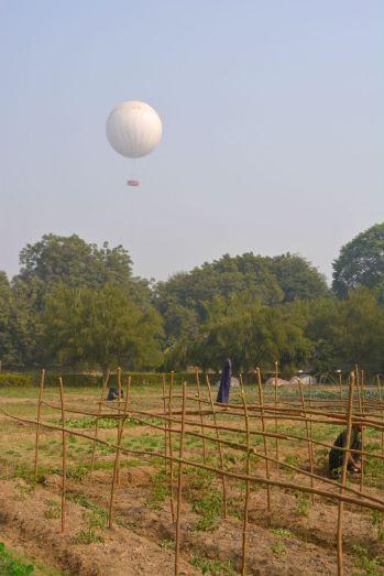 Trident Agra Garden 4