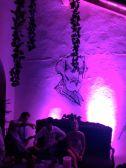 Garden of Delights New Years in Cartagena