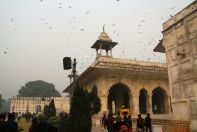 Rang Mahal with Pigeons Everywhere