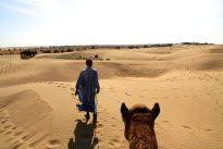Thar Desert Led by Guide