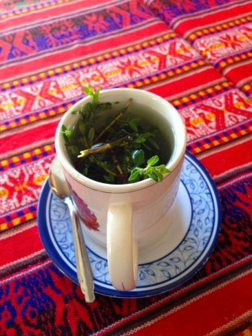 Imata Stone Forest Tea