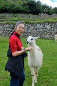 Machu Picchu Ma with Llama