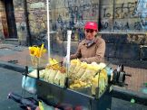 Plaza de Bolívar Food Vendor 2