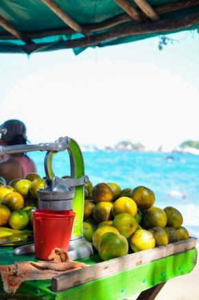 Tayrona National Park Orange Juice Stand