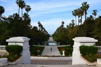 Algiers Le Jardin d'Essai du Hamma View