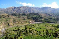 Colca Canyon View 5